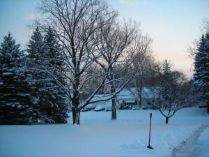 first snow 003